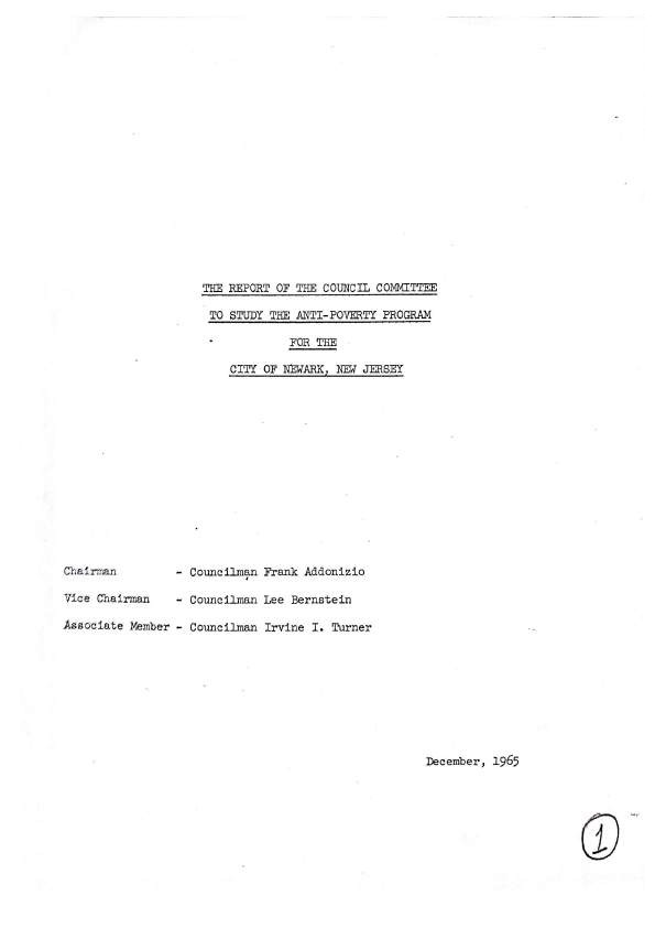 The Report of the Council Committee