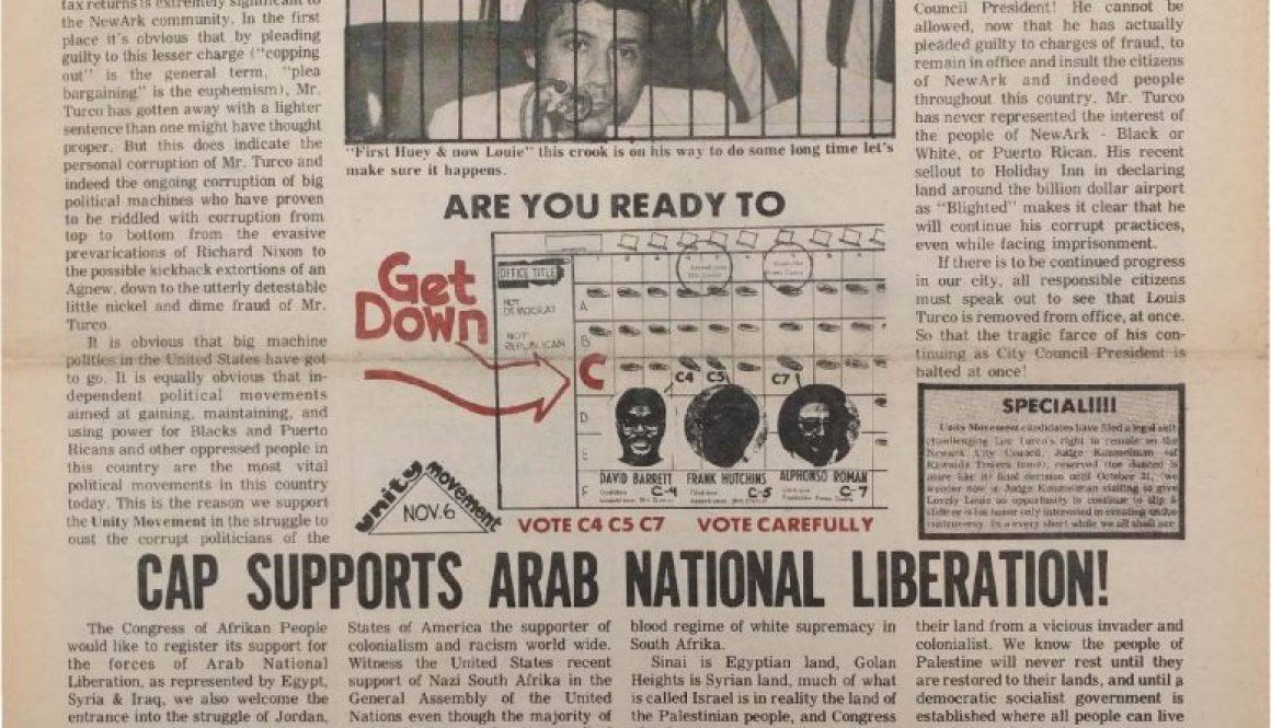 thumbnail of Black New Ark (November 1973, First Edition)
