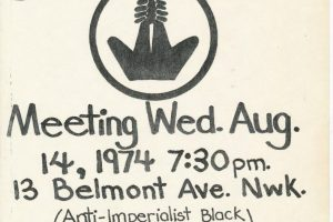 Flyer for Afrikan Liberation Support Committee (1974)